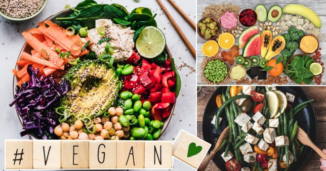 Will 2021 be the year of the vegan?