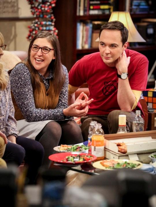 The Big Bang Theory stars mayim bialik and jim parsons