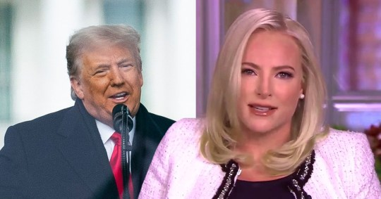 Meghan McCain has called for Republicans to 'invoke the 25th Amendment' against President Donald Trump