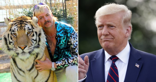 Tiger King's Joe Exotic and President Donald Trump