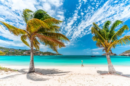 Woman walking on a palm-fringed beach on shore of turquoise Caribbean Sea, Antilles, Central America