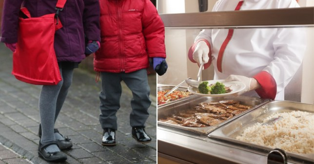 Schools preparing to throw away up to 15 million school dinners PA/Getty