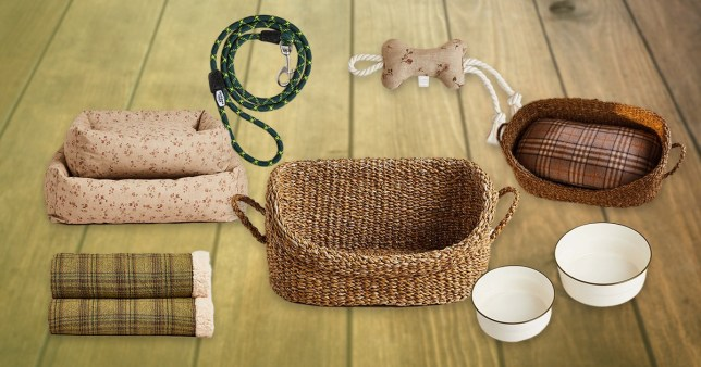 Collage of Zara Home pet range