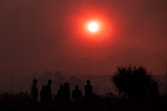 epa08940678 Le soleil se couche sur un incendie de forêt à Quilpue, région de Valparaiso, Chili, 15 janvier 2021. Le gouvernement chilien a évacué environ 25 000 personnes à titre préventif à la suite d'un incendie de forêt qui a brûlé quelque 300 hectares de forêt, selon l'Office national de Urgences (Onemi).  EPA / Alberto Valdes