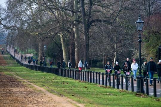 People walk and cycle on Rotten Row in Hyde Park