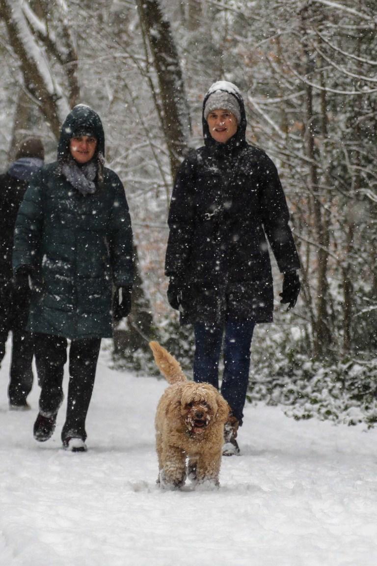 People walking their dog in the snow in Birmingham . 24/01/2021