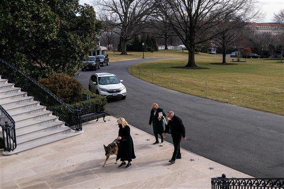 The Bidens' dogs, Major and Champ, arrive at the White House https://www.cbsnews.com/news/joe-biden-dogs-white-house/