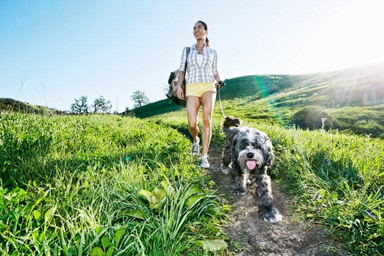Mixed race woman walking dog on grassy hillside