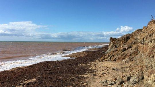 Chilton Chine on the Isle of Wight. (Credits: PA)