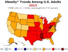 Watch how fast the world became obese - Metrocosm on obesity death, obesity in canada, obesity statistics in america, obesity rates in america 2013, obesity states, obesity in us 2012, diabetes trends map, food trends map, flu trends map,