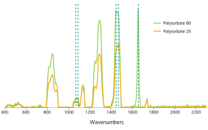 Comparison of Raman spectra taken of Polysorbate 20 and Polysorbate 80.