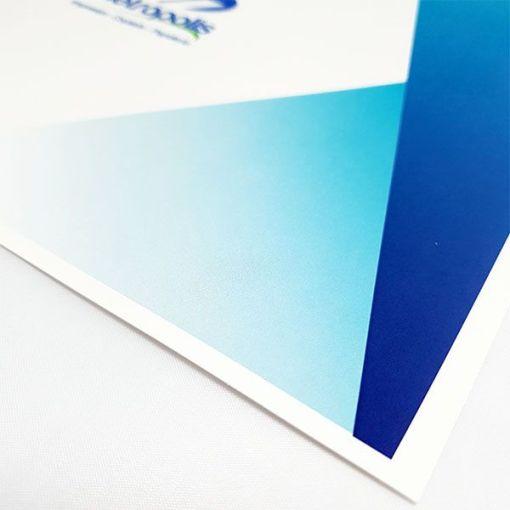 impresión cartonite full color