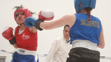 Photo of Iniciara el Torneo Selectivo de Boxeo