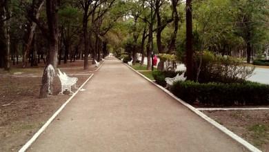 Photo of Apertura del Parque Morales se pospone por alza de casos de COVID-19