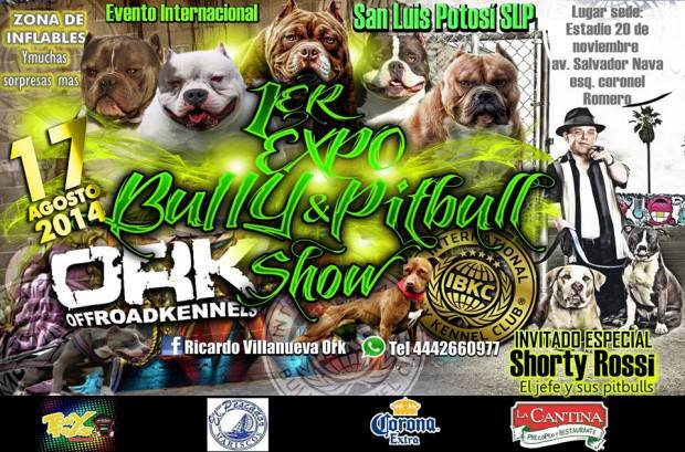 1er Expo Bully and Pitbull