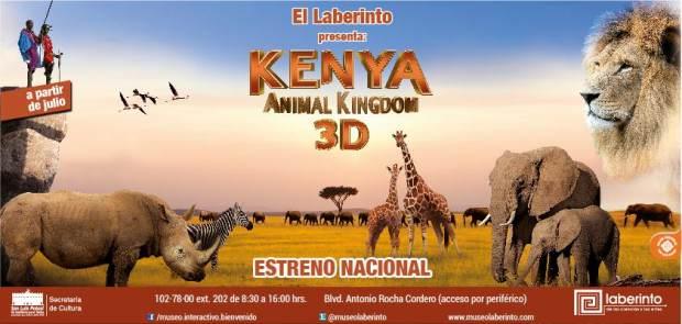 kenya animal museo laberinto