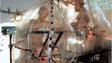 Photo of ¿Cuanto tarda la plastinación de un cuerpo?