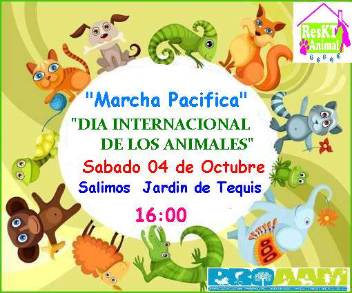 Marcha pacifica del Día Internacional de los Animales @ Jardín de Tequis | San Luis Potosí | San Luis Potosí | México