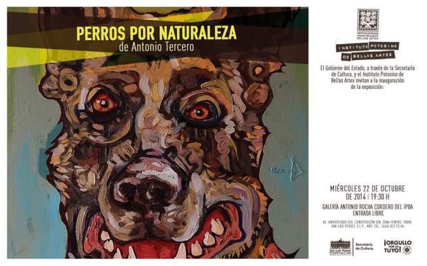 Perros por naturaleza