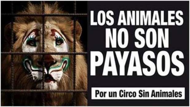 circo sin animales slp
