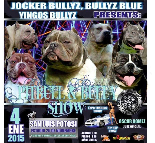 Pitbull & Bully Show @ Estadio 20 de Noviembre | San Luis Potosí | San Luis Potosí | México