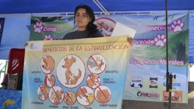 Photo of Se realizó el Croquetón 2015