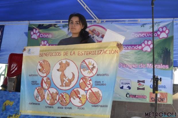 BicicletasAntiguasSLP00001