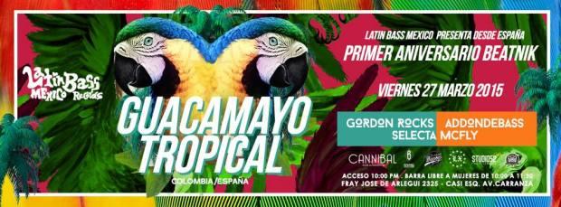 Guacamayo Tropical