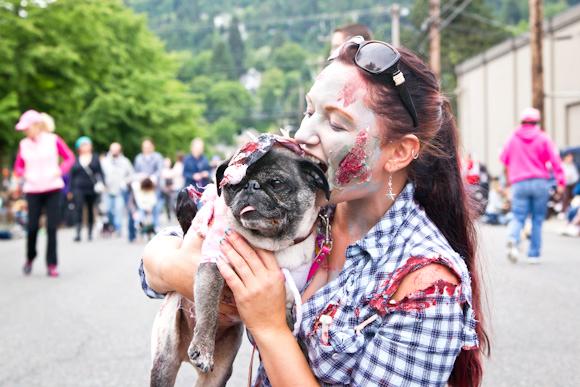 pug zombie