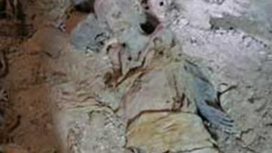 Photo of Encuentran momia en las excavaciones de Av Alvaro Obregón