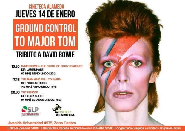 Cineteca Davir Bowie