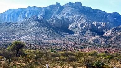 Photo of Sierra de San Miguelito único pulmón natural de la Capital Potosina