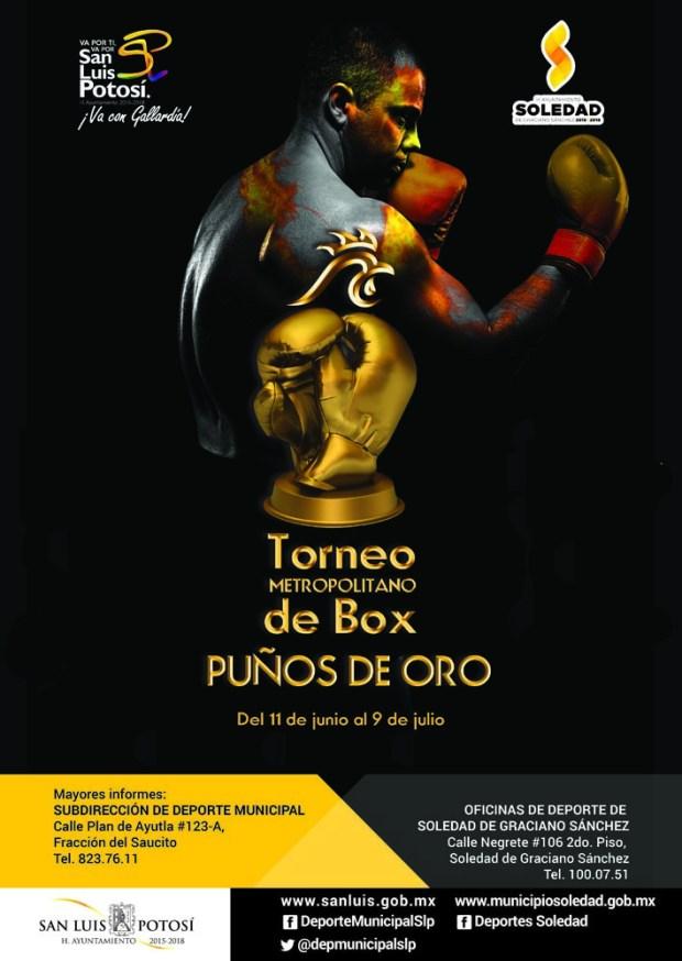 Torneo Metropolitano de Box Puños de Oro