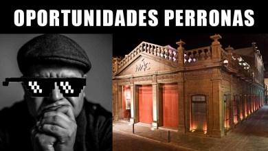 Photo of Artistas potosinos se manifestarán en el Día de los Museos