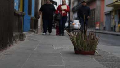 Photo of Abandono de las calles del Centro Histórico; ponen maceta en hoyo