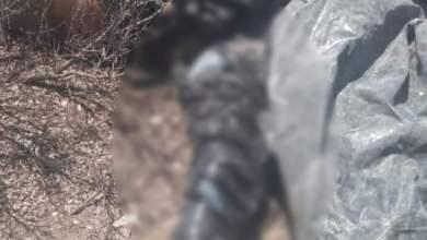 Photo of Localizan dos cuerpos en bolsas en comunidad de Matehuala