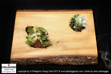 ZURICH/SWITZERLAND, 04.09.2017 - 3rd place Swiss Selection: Marco Gaisser, Sous Chef, 'Restaurant Rias' - Kloten, Switzerland. The beauty of nature. Captured during the Swiss semifinals of S. Pellegrino Young Chef 2017 at Belvoir Park, Zurich/Switzerland. copyright by san pellegrino / photo by remy steinegger - www.steineggerpix.com