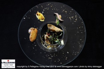 ZURICH/SWITZERLAND, 04.09.2017 - Benjamin Le Maguet, Sous Chef, 'Le Maguet' - Les Evouettes, Switzerland. Cueillette de la semaine: Printemps. Captured during the Swiss semifinals of S. Pellegrino Young Chef 2017 at Belvoir Park, Zurich/Switzerland. copyright by san pellegrino / photo by remy steinegger - www.steineggerpix.com