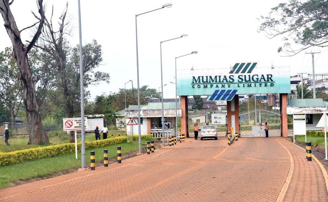 Devki withdraws bid to lease Mumias Sugar Company