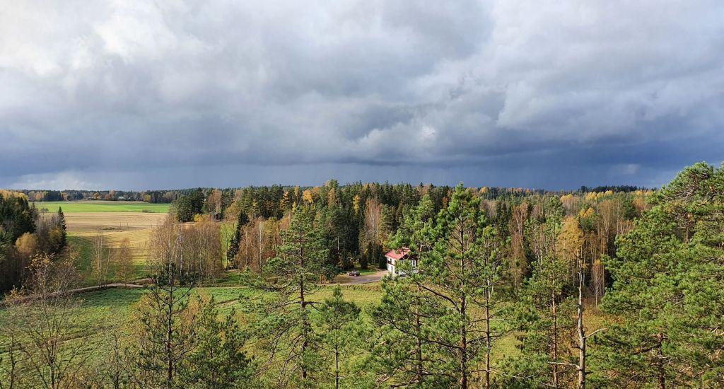 Ukkostaivas ja metsänreuna