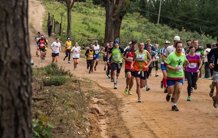 Knysna Forest Marathon – A runner's dream