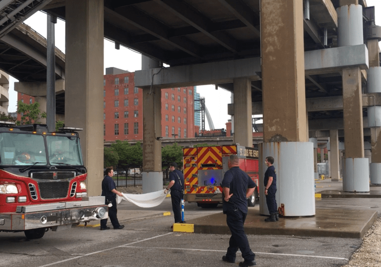 Firefighters save kitten from beam under overpass