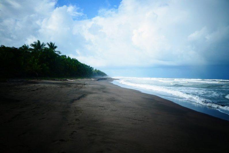 costa rica tortuguero strand