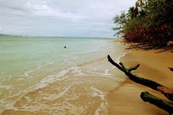 cahuita playa blanca costa rica