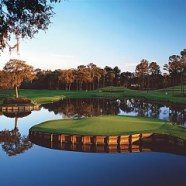 Palm Harbor Townhomes – New Homes!