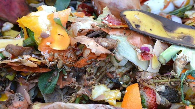 Seu prato de comida pode melhorar o clima