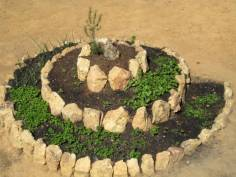 Foto Espiral de Ervas - Pedras