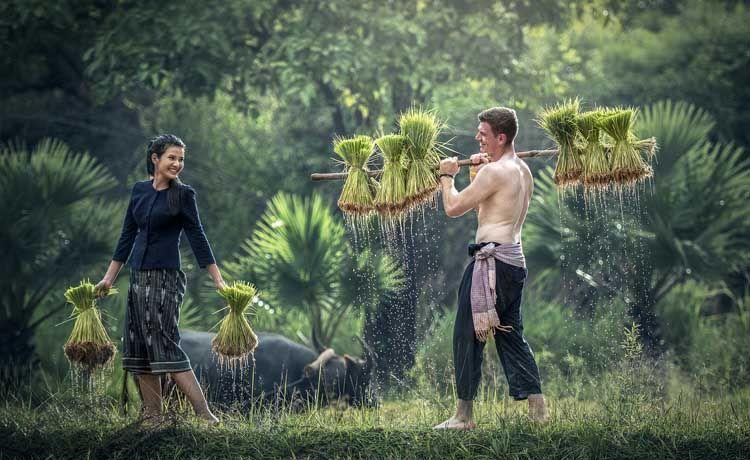 Trabajos que hacen los españoles y latinos en Tailandia