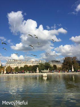 Jardin Les Tuileries Paris