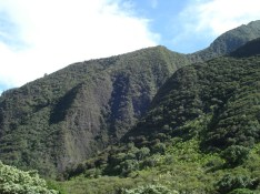 Iao Valley (1)